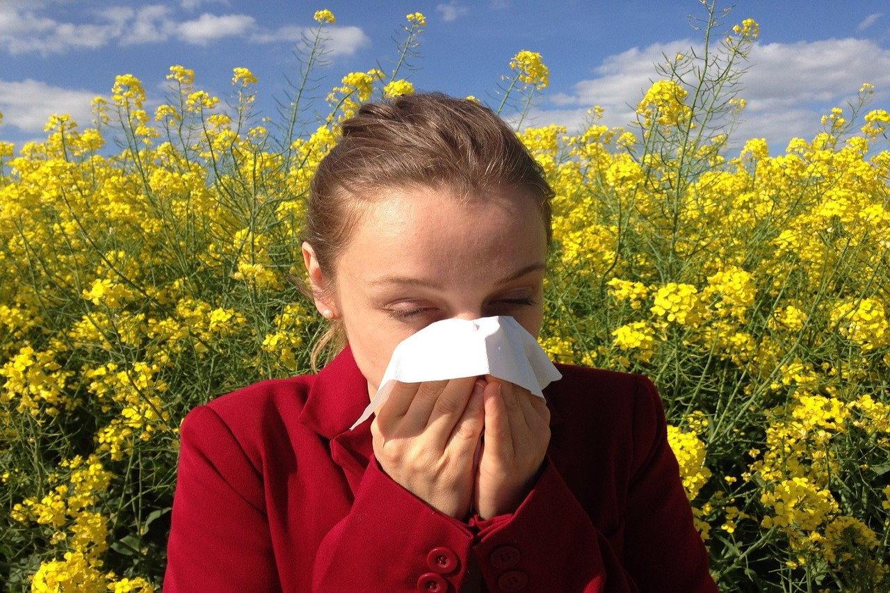 Kalendarz alergika